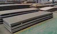 Hastelloy C22 B2 Plates And Sheets